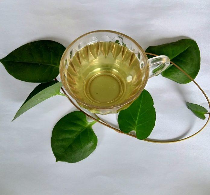 Rebus atau seduh daun binahong, lalu diminum selagi hangat./foto: rin